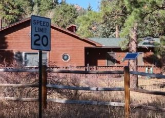 Foreclosure Home in Morrison, CO, 80465,  VALLEY HIGH RD ID: P1523811