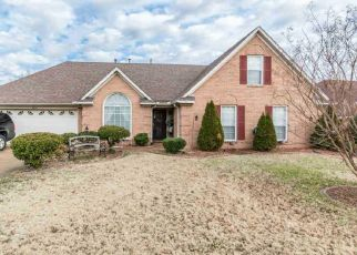 Foreclosure Home in Memphis, TN, 38125,  ANNANDALE DR ID: P1528638