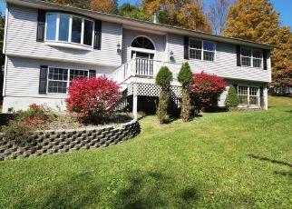 Casa en ejecución hipotecaria in Salt Point, NY, 12578,  HURLEY RD ID: P1534698