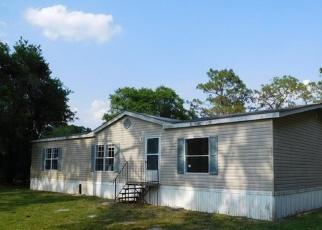 Casa en ejecución hipotecaria in Lakeland, FL, 33809,  SMOKIE CREEK LN ID: P1538695