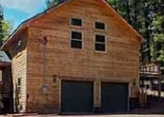 Foreclosure Home in Florissant, CO, 80816,  GERKA LN ID: P1559098