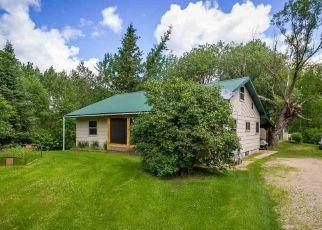 Casa en ejecución hipotecaria in Ely, MN, 55731,  GRANT MCMAHAN BLVD ID: P1564048