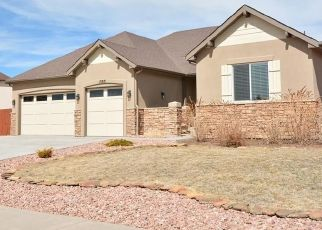 Foreclosure Home in Peyton, CO, 80831,  GLEN CANYON DR ID: P1565805