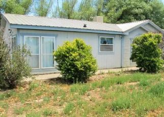 Foreclosure Home in Delta, CO, 81416,  ADOBE ACRES RD ID: P1571935
