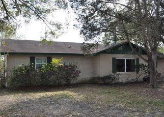 Casa en ejecución hipotecaria in Fruitland Park, FL, 34731,  PALM ST ID: P1598539