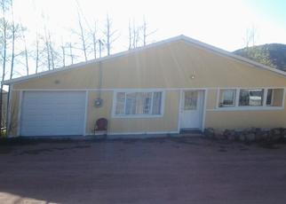Foreclosure Home in Teller county, CO ID: P1635353