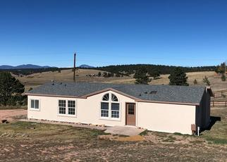 Foreclosure Home in Teller county, CO ID: P1661894