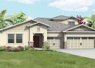 Casa en ejecución hipotecaria in Mount Dora, FL, 32757,  HACKNEY LOOP ID: P1667019