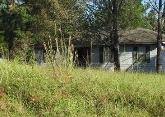 Casa en ejecución hipotecaria in Jackson Condado, FL ID: P1669150