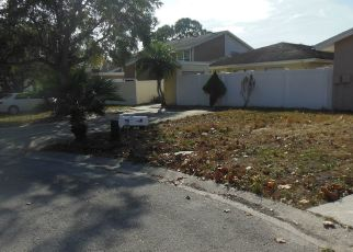 Foreclosure Home in Tampa, FL, 33624,  BOTTLEBRUSH PL ID: P1685777