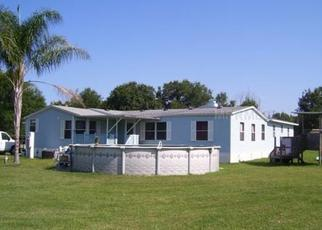 Foreclosure Home in Wesley Chapel, FL, 33545,  WAY DR ID: P1686210