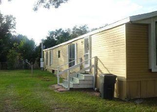 Foreclosure Home in Summerfield, FL, 34491,  SE 91ST CT ID: P1704691