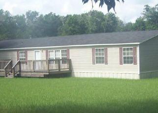 Casa en ejecución hipotecaria in Florahome, FL, 32140,  INDIAN LAKES FOREST RD ID: P1707890