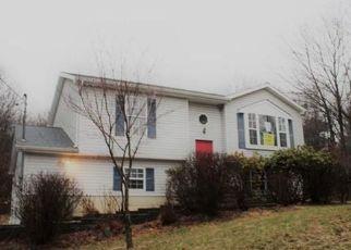 Casa en ejecución hipotecaria in Blakeslee, PA, 18610,  SKYLINE DR ID: P1717880