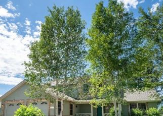 Foreclosure Home in Gypsum, CO, 81637,  SPRINGFIELD ST ID: P1724805