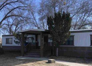 Casa en ejecución hipotecaria in Carson City, NV, 89706,  DALE DR ID: P1727891