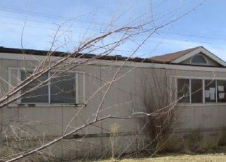 Foreclosure Home in Sun Valley, NV, 89433,  CAROL DR ID: P1775757