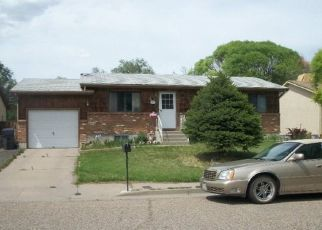 Foreclosed Homes in Pueblo, CO, 81004, ID: P1799784