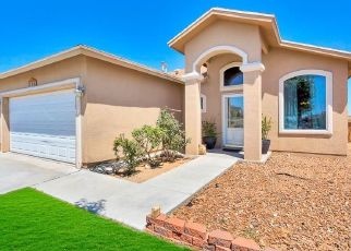 Foreclosure Home in El Paso, TX, 79938,  MAPLE POINT DR ID: P1803659