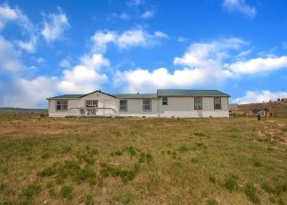 Foreclosure Home in Elbert county, CO ID: P1815277