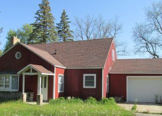 Foreclosure Home in Mecosta county, MI ID: P1816114
