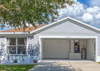 Foreclosure Home in Riverview, FL, 33569,  HAMMOCKS GLADE DR ID: P1823162