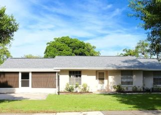 Foreclosure Home in Valrico, FL, 33594,  S MILLER RD ID: P1823204