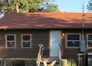 Foreclosure Home in Woodland Park, CO, 80863,  LAUREL ST ID: P1825646