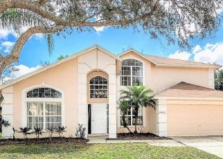 Foreclosure Home in Valrico, FL, 33596,  WINDING RIVER DR ID: P282152