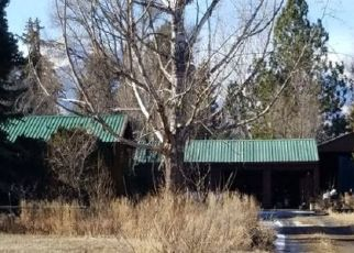 Foreclosed Home en PAMELA LN, Corvallis, MT - 59828