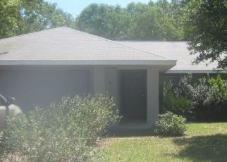 Foreclosed Home en PECAN RUN, Ocala, FL - 34472