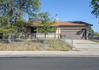 Foreclosure Home in Denver, CO, 80239,  RANDOLPH PL ID: P930877