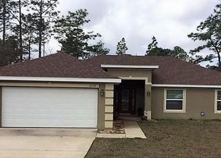 Foreclosed Home en MEADOW PLOVER RD, Brooksville, FL - 34614