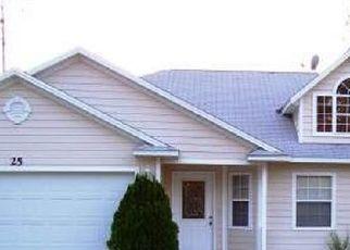 Foreclosed Home in BRIARVUE LN, Palm Coast, FL - 32137
