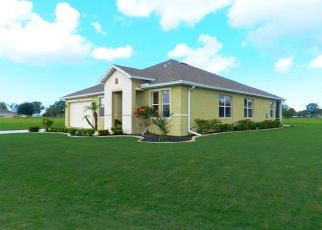 Foreclosed Home en CADIZ DR, Punta Gorda, FL - 33955