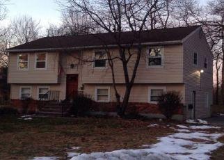 Foreclosed Home en MARGARET ST, Red Hook, NY - 12571