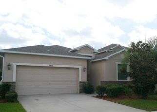 Foreclosed Home in MARMALADE CT, Land O Lakes, FL - 34638