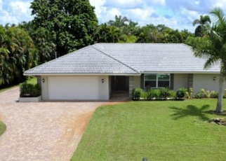 Foreclosed Home en PALM RIVER BLVD, Naples, FL - 34110