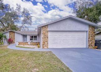 Foreclosed Home en ELEUTHERA PL, Seffner, FL - 33584