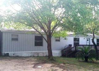 Foreclosed Home en GOLDEN ACRES CIR, Crestview, FL - 32539