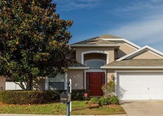 Foreclosed Home en BRIARCLIFF CIR, Mount Dora, FL - 32757