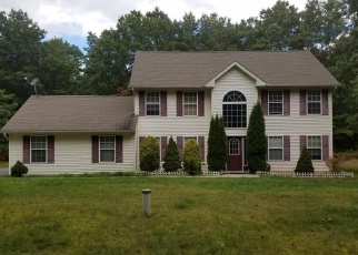 Foreclosed Home en BRIAN LN, Effort, PA - 18330