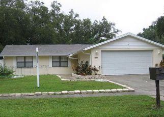 Casa en ejecución hipotecaria in Tampa, FL, 33624,  WOODLARK DR ID: S70215097