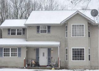 Casa en ejecución hipotecaria in Long Pond, PA, 18334,  SULLIVAN TRL ID: S70215156