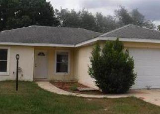 Casa en ejecución hipotecaria in Avon Park, FL, 33825,  W SALINAS RD ID: S6311095