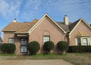 Foreclosure Home in Memphis, TN, 38141,  MEADOWS END LN ID: S6328124