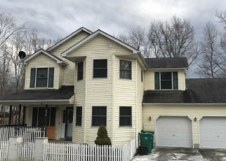 Foreclosed Home en SENECA RD, East Stroudsburg, PA - 18302