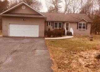Foreclosed Home en SPICEBUSH LN, Milford, PA - 18337