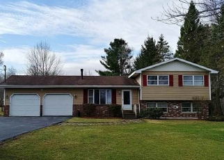 Foreclosed Home en E SHORE RD, Delanson, NY - 12053