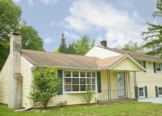 Casa en ejecución hipotecaria in Pleasant Valley, NY, 12569,  MOUNTAIN VIEW DR ID: S6337390